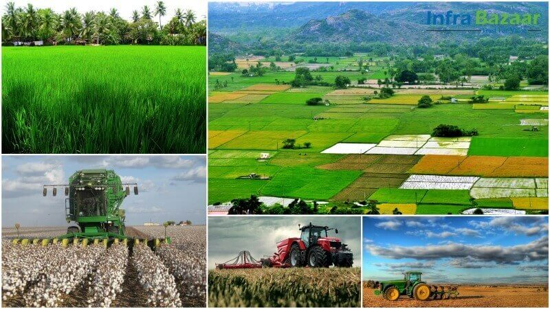Agriculture- the Culture of India |Infra Bazaar